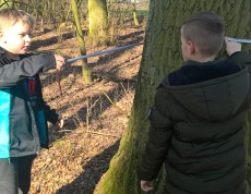 Badamy wiek drzew (2)